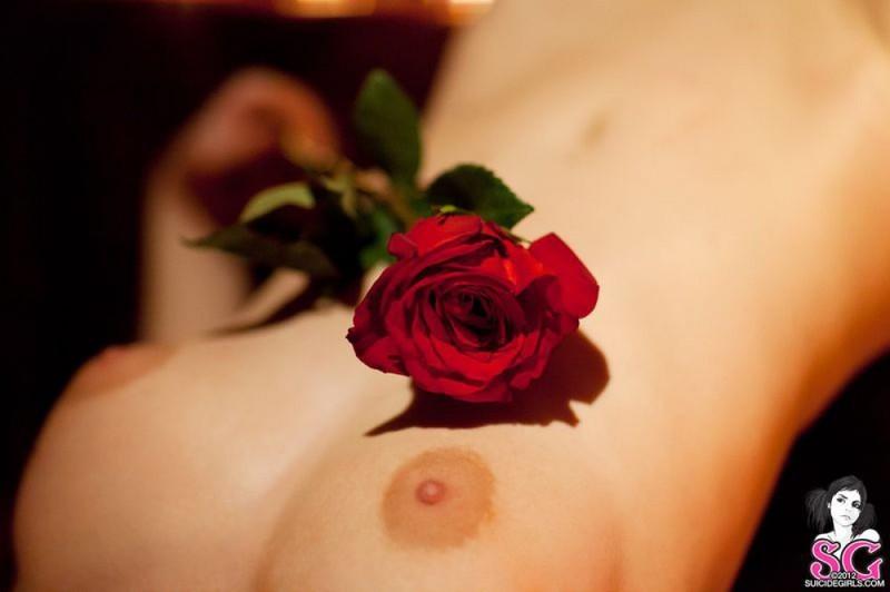 Черная вдова в кожаных трусиках приготовила топор и розу